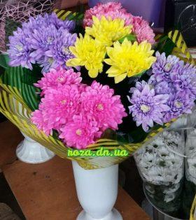 Макеевка цветы